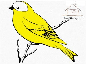 yellow_bird