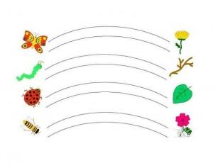animals labyrinth bugs (2)