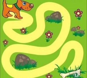 animals labyrinth dog