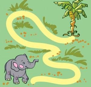 animals labyrinth elephant