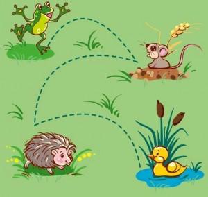 animals labyrinth hedgehog