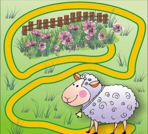 animals labyrinth sheep