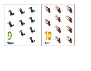 birds math activities