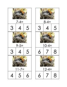birds math activity