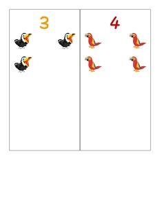 birds number cards activities