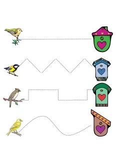 birds pre writing