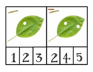 bugs activities leaf number