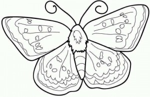butterfly coloring fıne motor (3)