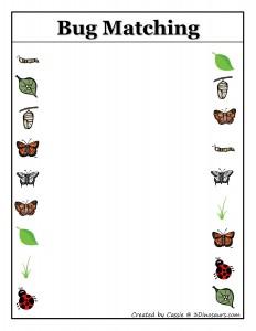 butterfly matvhing