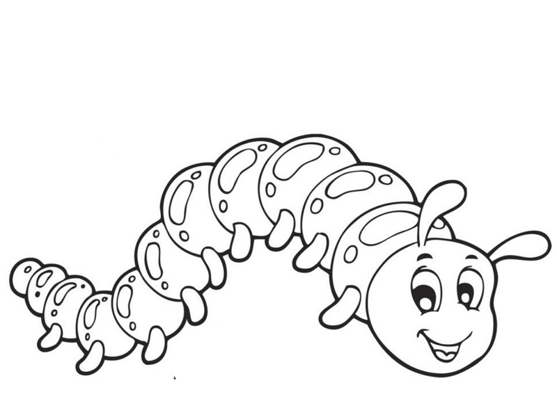 caterpillar coloring pages funnycrafts