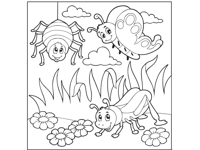 Bugs Activities For Preschool Coloring Pages