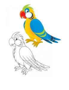 coloring pages parrot