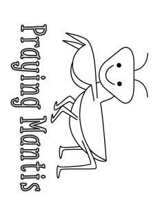 coloring pages praying mantis