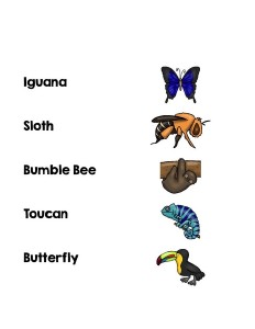 cool animals matching word