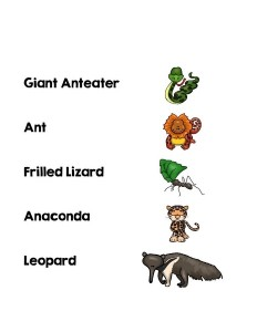 cool animals word matching
