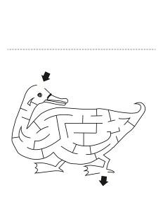 duck labyrinth