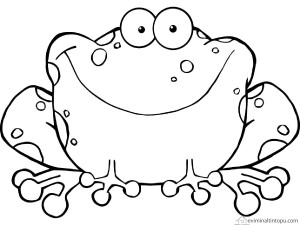 frog  coloring pages for kıds