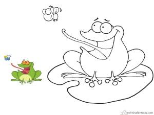 frog matching  coloring pages