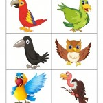 Birds Printable for Kıds