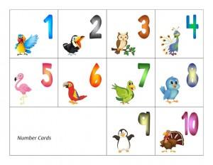 number cards birds