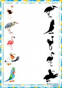 preschool activities shadow birds