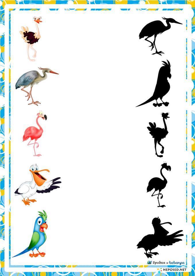 preschool activities shadow birds preschool and homeschool. Black Bedroom Furniture Sets. Home Design Ideas