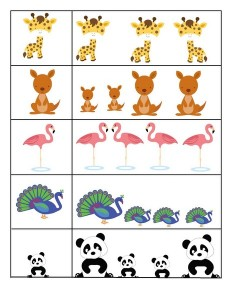 preschool animals  cool