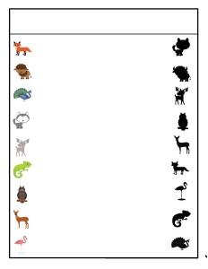 preschool animals shadow matching