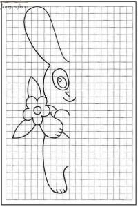 rabbit  symmetry