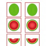 Watermelon Worksheets for Preschool