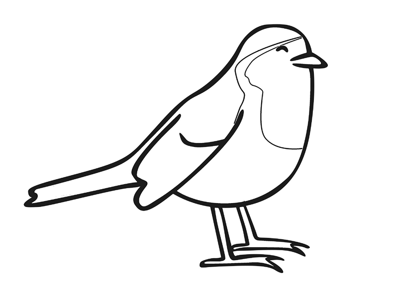 zoo coloring pages birds