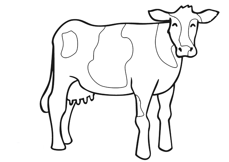 zoo coloring pages cool