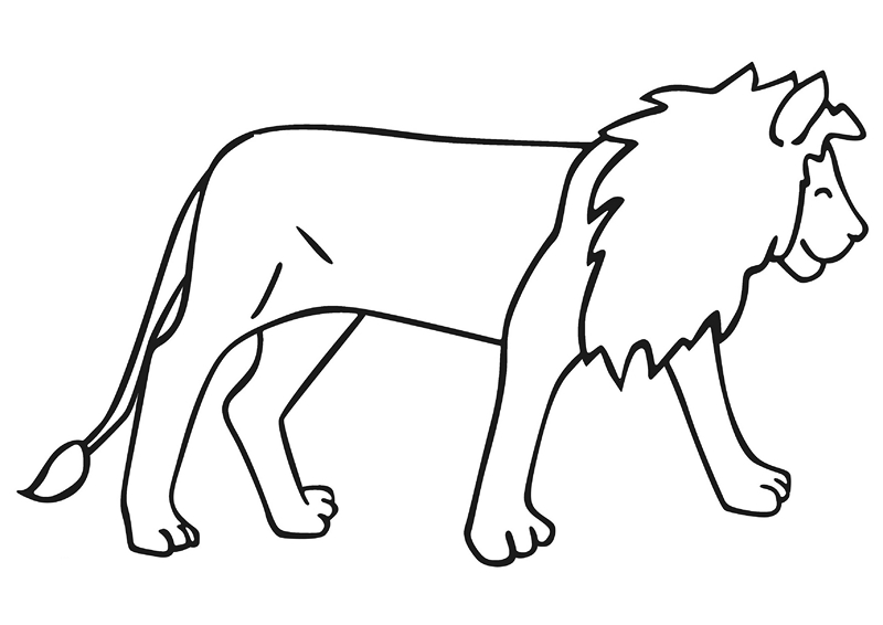 zoo coloring pages lions
