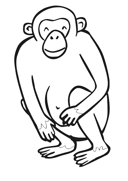 zoo coloring pages monkey
