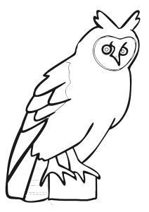 zoo coloring pages owl