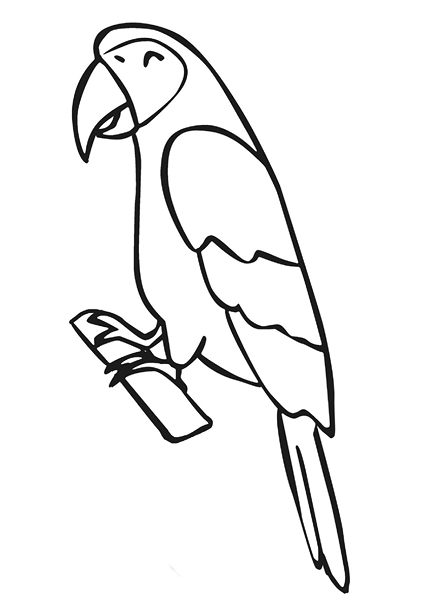 zoo coloring pages parrot