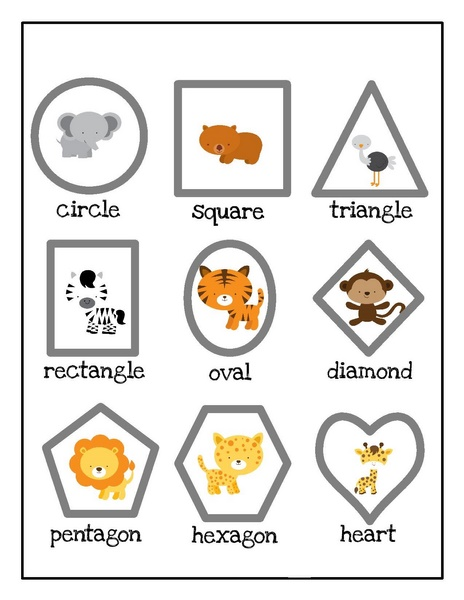 zoo shapes activities for kıds