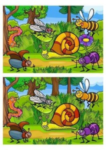 Find the difference between two images (13)