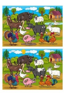 Find the difference between two images (14)