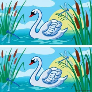 Find the difference between two images (4)