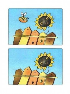 Find the difference between two images (45)