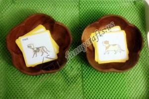 animal skeleton matching cards (1)