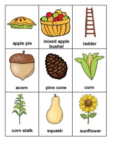 autumn theme montessori cards worksheets