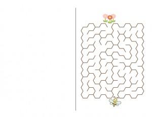 bee labyrinth