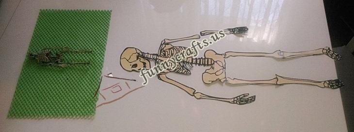 build a skeleton (7)