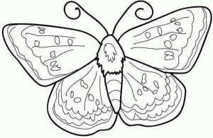 butterfly coloring pages (21)
