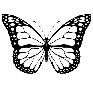 butterfly coloring pages (24)