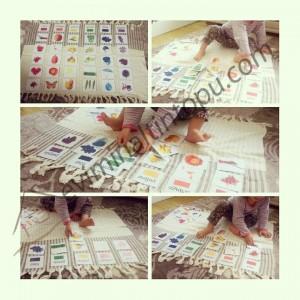 color cards montessori