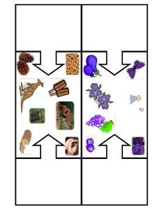 color puzzles montessori