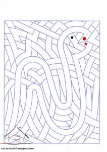cool easy labyrinth (2)